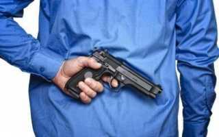 7 «стимулирующих пинков» владельцам огнестрельного оружия