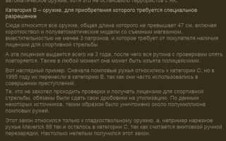 """Гражданское огнестрельное оружие: """"перевод"""" закона на русский"""