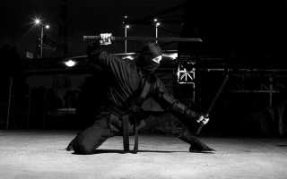 Ниндзя. Воин-тень. Часть 2: Тренировки с малых лет