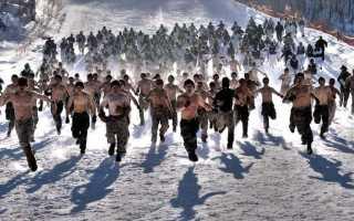 Бег как тренировка для повышения общего уровня выносливости
