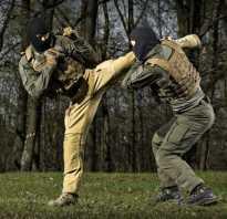 Нужен ли рукопашный бой в армии?