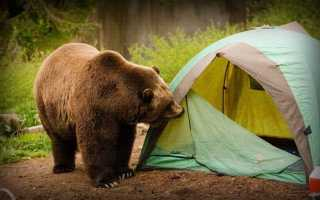 Укрытие в выживании и БП: Почему тент лучше палатки