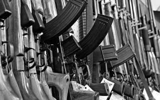 Я и оружие. О том, почему дома должно быть ружьё