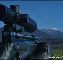 Гейб Суарез: точный выстрел из винтовки — универсальные рекомендации