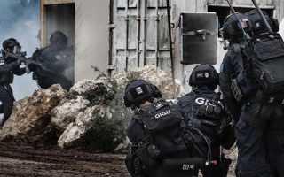 Спецподразделение «Дельта»: взгляд со стороны непостороннего наблюдателя