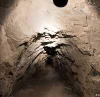 Как устроен бункер Третьего рейха