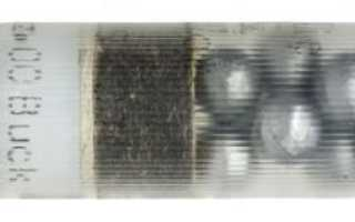 Тактический дробовик для защиты дома. Характеристики оружия и варианты боеприпасов