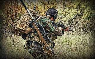 Физическая подготовка снайпера — необходимые упраженния