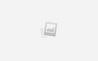 Американец о ружье Вепрь-12: интервью с владельцем оружия из США